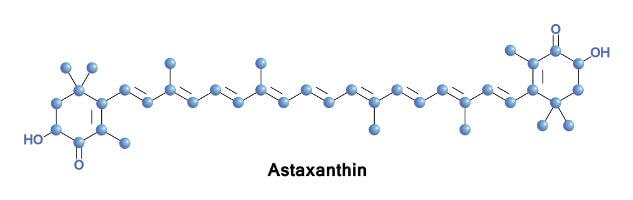 Co jsou antioxidanty, proč je potřebujeme a z čeho je získáme?