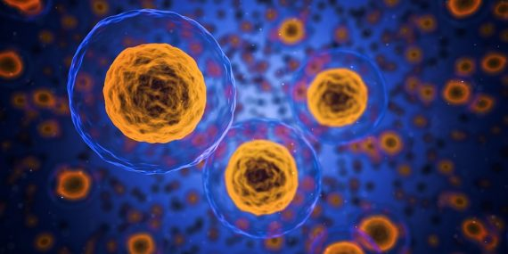 Zdravá buňka zdravý život