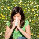 Vypořádejte se s projevy alergie přírodní cestou aneb Tipy na bylinky, které pomohou při rýmě či ekzému