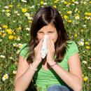 5 největších mýtů o jarní alergii: Nelze ji zdědit, stačí jíst lokální med, zmizí změnou prostředí
