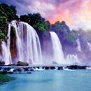 Acai – jak chutná a voní Amazonský prales