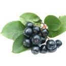 Přírodní plody na podzim