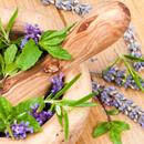 Homeopatie – Jsme skutečně zdraví? (4. díl)
