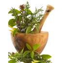Léčivé rostliny pro detoxikaci