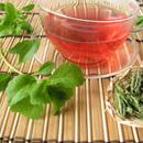 Stevia rebaudiana (stévie sladká)