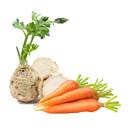 Živá strava je celistvé jídlo, které má svou životní energii neporušenou