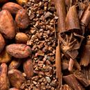 Karob jako zdravější alternativa kakaa nebo čokolády