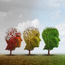 Alzheimerova choroba se může projevit i v mladém věku, paměť posílí pravidelný trénink nebo bylinky