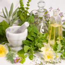 Léčivé rostliny a krevní tlak
