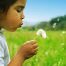 Nejčastější typy alergií