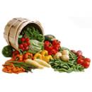 Vegetariánská a veganská strava