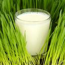 Laktóza – skrytý problém
