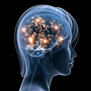 Léčivé rostliny jako prevence nervových nemocí