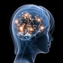 Mozkové vlny: Která hladina vědomí je pro zdraví nejlepší?