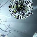 Neuroprotektiva – strážci našich nervů