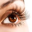 Jak na podrážděné oči: Tipy na bylinky, které pomohou při zánětech, alergiích či únavě ze sledování monitoru