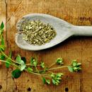 Oreganový olej – skvělý do kuchyně, na čistění domácnosti i jako doplněk stravy