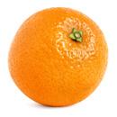 Divoký pomeranč (Pomerančovník hořký, Citrus aurantium)