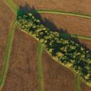 Bioseriál – Vybydlená půda?
