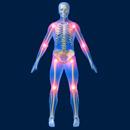 Pevnější kosti – bez chemických léků (část druhá)