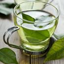 Matcha – zelený čaj nejen pro samuraje