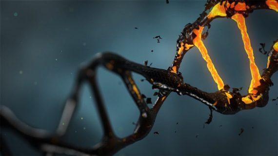Epigenetika – moc nad svými geny, moc nad svým příběhem